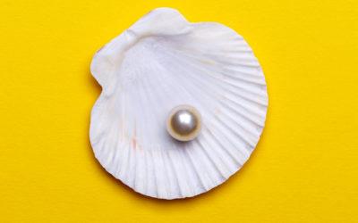 Candidat(e) : La perle rare !
